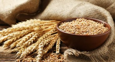 Emmer Wheat for Diabetes